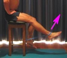 Knee Exercise Program