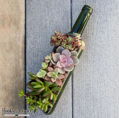 awesome wedding centerpiece idea! succulents planted in a split wine bottle! ~ we ❤ this! moncheribridals.com