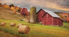 Autumn Breeze by Artist Lori Deiter 20x34