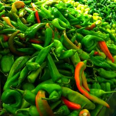 Peppers at the Mexican market in Tucson, AZ