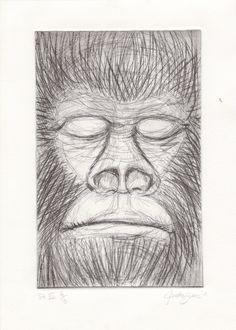 Monkey print Lee Jeffries, Fine Art, Art Work, Monkey, Drawings, Artwork, Work Of Art, Playsuit, Monkeys