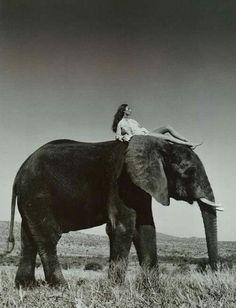 Nude woman riding elephant #9