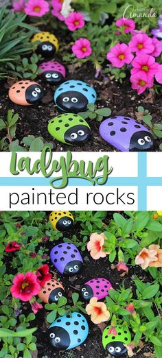 We love painting on rocks, and our colorful ladybug rocks are a great craft for adults and kids! This painted rock idea is great for the garden or you can nestle them inside house plants. Our ladybug rocks make great paperweights too! Rock Crafts, Kids Crafts, Craft Projects, Arts And Crafts, Kids Garden Crafts, Craft Ideas, Adult Crafts, Toddler Crafts, Pebble Painting