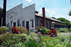 Gruene Hall - The oldest dance hall in TX, has hosted many famous folks.  A must see if you are near New Braunfels.