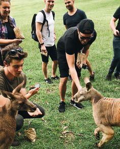 Yay Shawn in Australia !