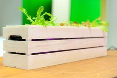 Hemmaodlat is raising funds for Scandinavian Design Grow Box on Kickstarter! A hydroponic grow box with everything you need to get started growing in your own home. Hand made in Sweden with Scandinavian design. Hydroponic Grow Box, Hydroponics, Grow Boxes, Scandinavian Design, Solid Wood, Diy Crafts, Handmade Gifts, Outdoor Decor, Projects
