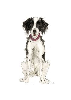Custom Pet Illustration by Emily Mayne Studio Dog Illustration, Pet Portraits, Invites, Your Pet, Watercolor Paintings, Whimsical, Digital Art, Hand Painted, Pets