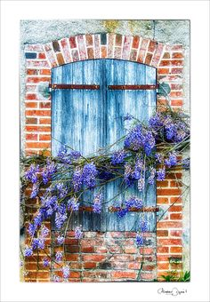 French Windows, France, Doors, French, Gate