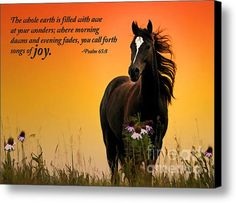 Evening Fades Canvas Print by Jill Dunham. All canvas prints are professionally printed, assembled, and shipped within 3 - 4 business days and delivered ready-to-hang on your wall. Choose from multiple print sizes, border colors, and canvas materials. Psalm 65, Inspirational Horse Quotes, Scripture Pictures, Favorite Bible Verses, Horse Pictures, Horse Art, Animal Quotes, Stretched Canvas Prints, Beautiful Horses