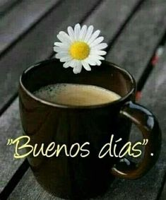Good Morning In Spanish, Good Morning Good Night, Good Day Quotes, Good Morning Quotes, Friday Coffee, Spanish Greetings, Praying For Others, Happy Everything, Morning Greetings Quotes