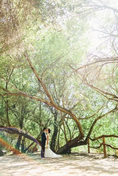 Jenny & Tom's Calamigos Ranch Wedding   Sweet Little Photographs