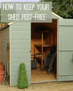 How to Keep your Shed Free from Pests | Love Chic Living