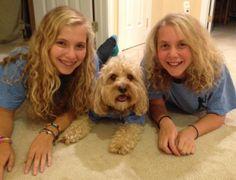 Double trouble: Meet 12 'doggie doppelganger' favorites