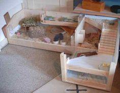 Guinea pigs eV | DIY projects