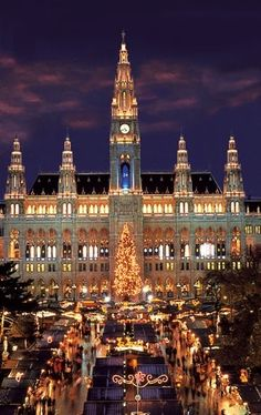 Vienna during Christmas...I've been here at Christmas time....just magical!  This is the Rathaus (City Hall).