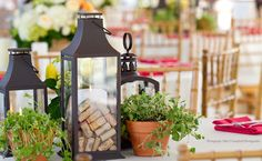 Herbs and a Lantern filled with bottle corks, an oh so perfect centerpiece, simple!