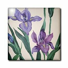 """2 Purple Irises - 12 Inch Ceramic Tile by Amy Hurley Heath. $22.99. Image applied to the top surface. High gloss finish. Clean with mild detergent. Dimensions: 12"""" H x 12"""" W x 1/4"""" D. Construction grade. Floor installation not recommended.. 2 Purple Irises Tile is great for a backsplash, countertop or as an accent. This commercial quality construction grade tile has a high gloss finish. The image is applied to the top surface and can be cleaned with a mild detergent.. Save 15% Off!"""