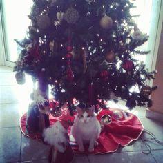 My beautiful boy under the christmas tree ❤