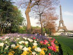 It's official. Springtime in Paris has officially begun!