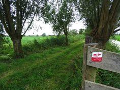 Ik wandelde het Eendenkooienpad (17km), een prachtig Klompenpad tussen IJsselstein en Montfoort. Lees mijn ervaringen over deze route op mijn blog.