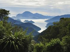 Tennyson Inlet, Marlborough Sounds, Marlborough, South Island, New Zealand, Pacific