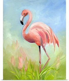 Amy Hautman Solid-Faced Canvas Print Wall Art Print entitled Flamingo Great Pink Heron, None Birds Painting, Canvas Wall Art, Art Painting, Wall Art Prints, Canvas Prints, Painting, Flamingo Painting, Canvas Painting, Bird Art