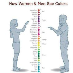 Men vs women:  Information writers should know