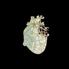 Shannon Rankin   Med in ArtMed in Art