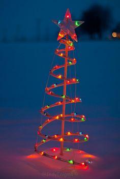 light tree ❇ blue   Flickr - Photo Sharing!