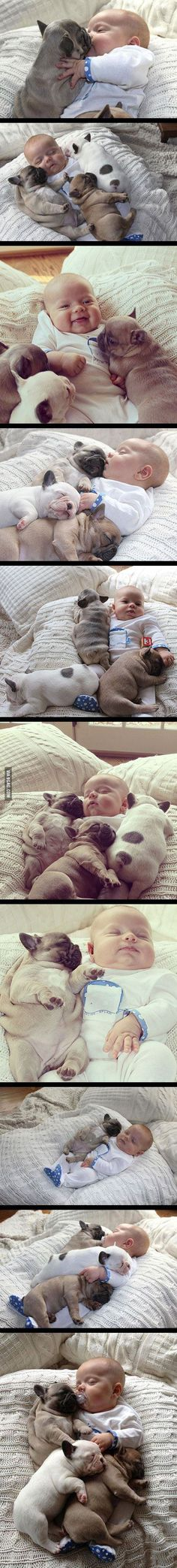 Babies and Puppies - my two favorite things :)