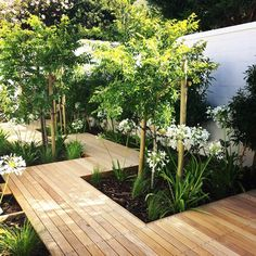 Recently completed contemporary garden path disappearing into a long narrow section of garden. I used Aristida and Agapanthus for a simple… Small Garden Landscape, Narrow Garden, Garden Spaces, Back Garden Design, Backyard Garden Design, Garden Path, Garden Decking Ideas, Courtyard Landscaping, Courtyard Gardens