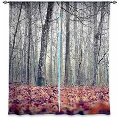 Window Curtains Lined by Monika Strigel It's in the Wood contemporary-curtains
