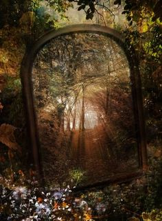 I would <3 to set up several large mirrors in a wood to have them all reflecting each other, how amazing would that be