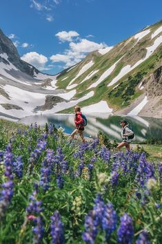 Run wild with the flowers, play under wide-open skies, and take in a deep breath of fresh mountain air when you visit Snowmass this summer.  Vacation Places, Places To Travel, Places To Visit, Night Sky Photos, Eagle Pictures, Mountain Vacations, English Heritage, Deep Breath, Back To Nature