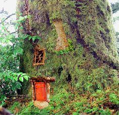 Fairy house in large tree | fairiehollow.com