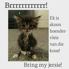 Hate Summer, Goeie More, Weather Seasons, Afrikaans, Birthday Wishes, Good Morning, Bring It On, Van, Winter