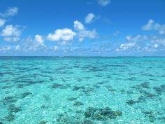 ABOUT   Samudra