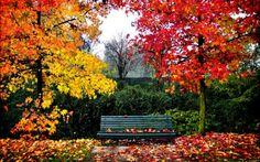 Autumn #1 (104 pieces)