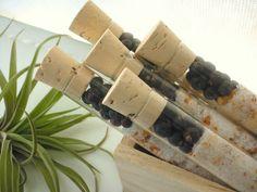 Harmonize Bath Affirmations: Organic Juniper Berry Grapefruit Bath Salts in Test Tubes $55.00