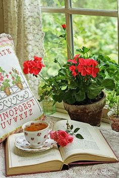 THIS IS TOTALLY ME!! A red geranium, a good book (mine is the Bible) and a hot cup of tea or coffee. Perfect.