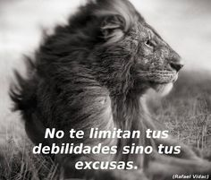 No te limitan tus debilidades sino tus excusas.