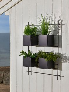 Bilderesultat for krom utepotter Walled Garden, Penthouse Apartment, Herb Garden, Rooftop, Greenery, Planter Pots, Herbs, Flowers, Camping