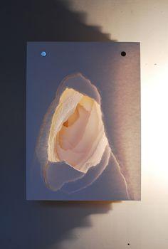 Angela Glajcar: Terforation Wandobjekt IV / XIII, 2008, Paper, Metal and Plastics, 70 x 50 x 20 cm