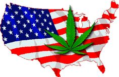 """Drug Enforcement Administration will reclassify marijuana as a """"Schedule Two"""" drug on August essentially legalizing medicinal cannabis in all 50 states with a doctor's prescriptio… Drug Enforcement Administration, Obama Administration, Cannabis News, Christmas Ornaments, 50 States, Freedom, Stock Market, Schedule"""