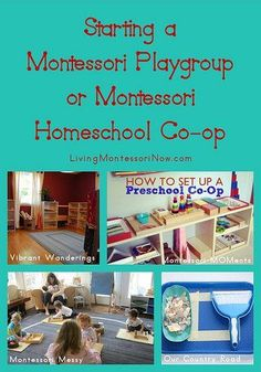 Here are some resources I found that could help you if you'd like to start a Montessori playgroup or Montessori homeschool co-op.