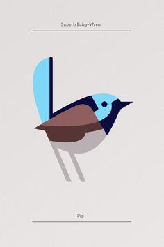 Fairy Wren - Josh Brill