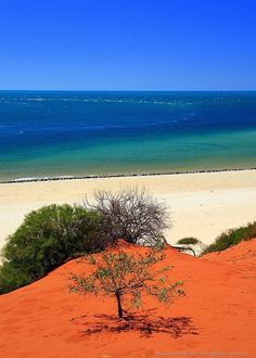 Red sand and sea - Francois Perron National Park - Western Australia - Australia 2
