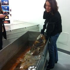 Dr Carole Baldwin shows the group a coelacanth - a species thought to have died out with the dinosaurs.