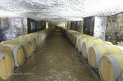 Bordeaux | Great Wine Capitals