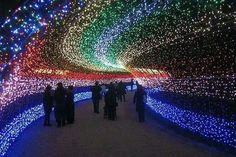 Tunnel of LIGHT - Nabana no Sato : Amazing Light Tunnel Made of Millions of LEDs in Japan The Japanese once again prove that they know how to leave us in awe. Nabana No Sato, Winter Light Festival, Light Tunnel, Mont Fuji, Epic Photos, Amazing Photos, Beautiful Pictures, Japan Photo, Expo